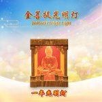 1-Year Bright Light